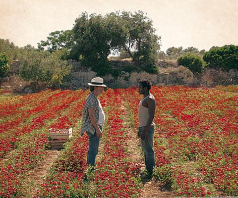 Il potere dell'oro rosso un film di Davide Minnella